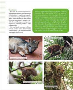 página 17 da Revista Barueri e a Mata Atlântica
